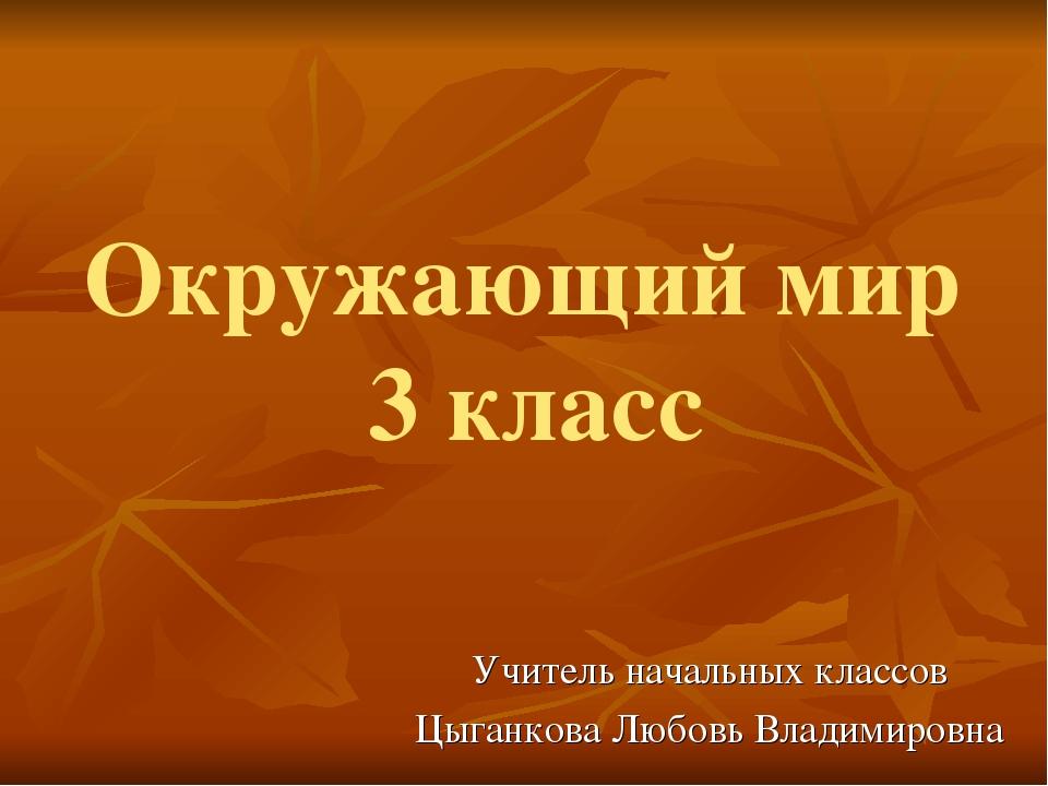 Окружающий мир 3 класс Учитель начальных классов Цыганкова Любовь Владимировна