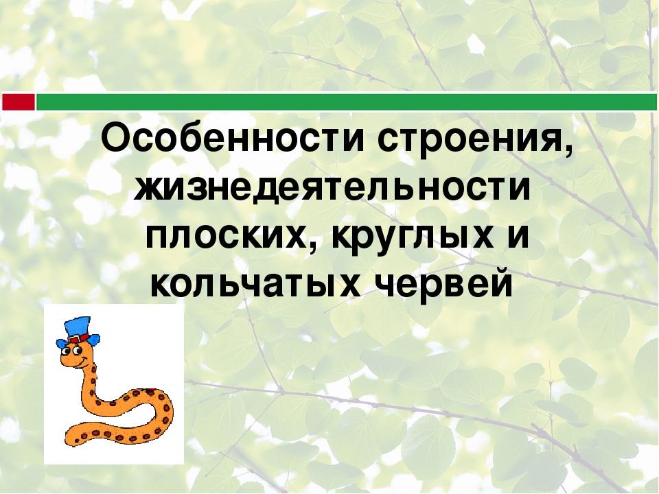 Особенности строения, жизнедеятельности плоских, круглых и кольчатых червей