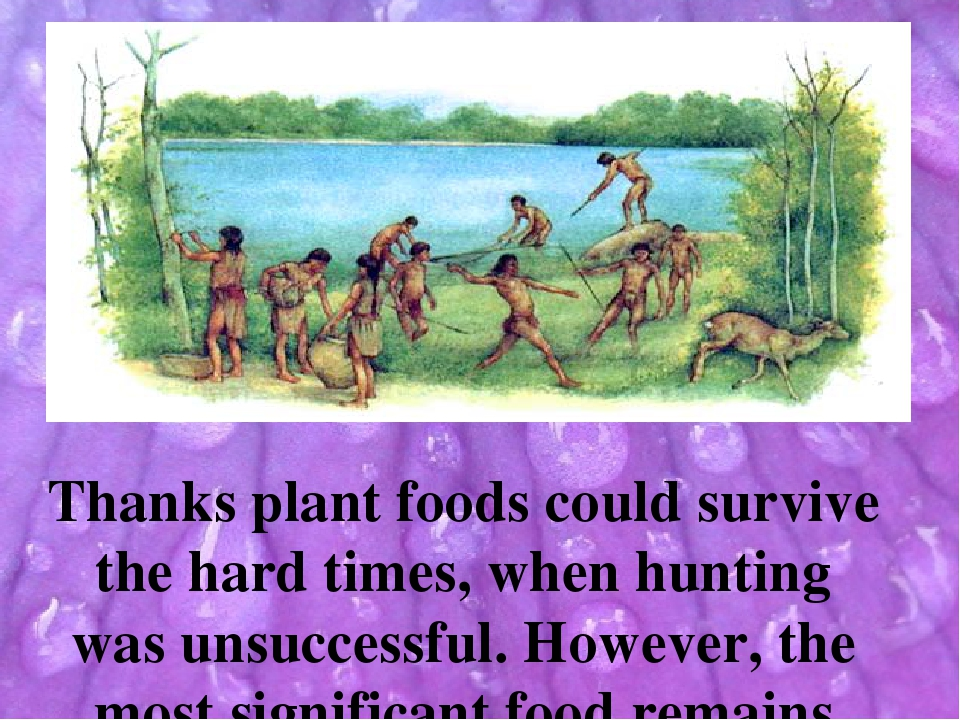 Thanks plant foods could survive the hard times, when hunting was unsuccessf...