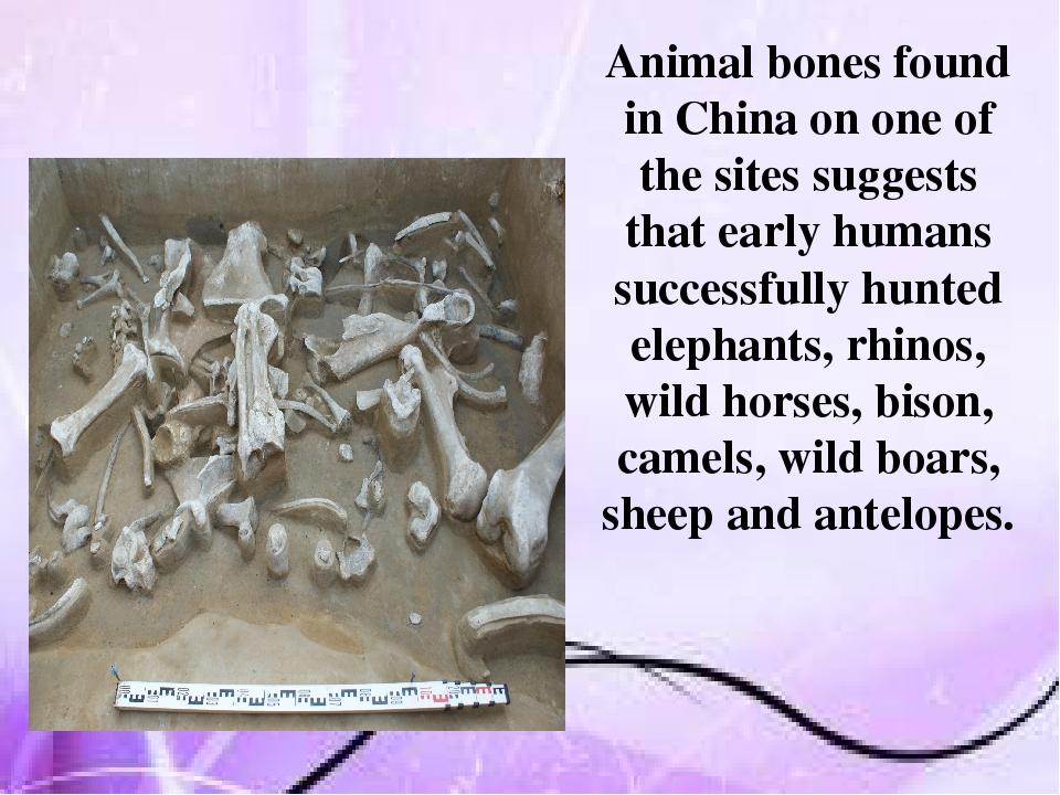 Animal bones found in China on one of the sites suggests that early humans s...
