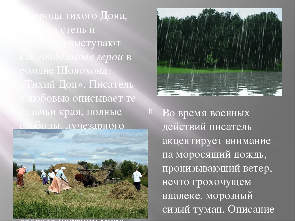 Природа в романе тихий дон доклад 2549