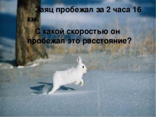 Заяц пробежал за 2 часа 16 км. С какой скоростью он пробежал это расстояние?