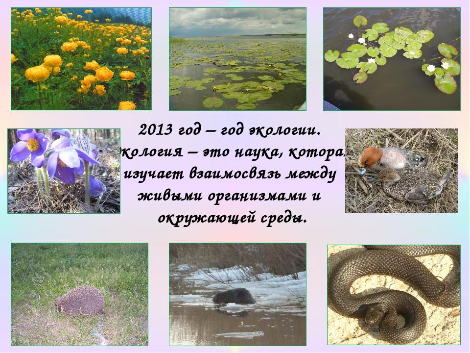 2013 год – год экологии. Экология – это наука, которая изучает взаимосвязь ме...