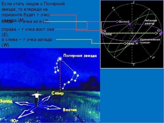 сзади – точка юга (S), Если стать лицом к Полярной звезде, то впереди на гор...