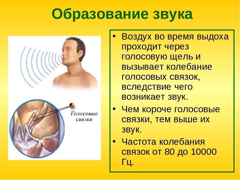 Кроме того, применяют следующие методы диагностики:.