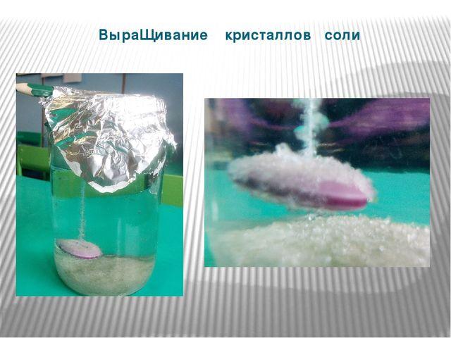 ВыраЩивание кристаллов соли