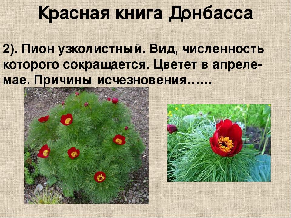 Картинки красной книги донбасса