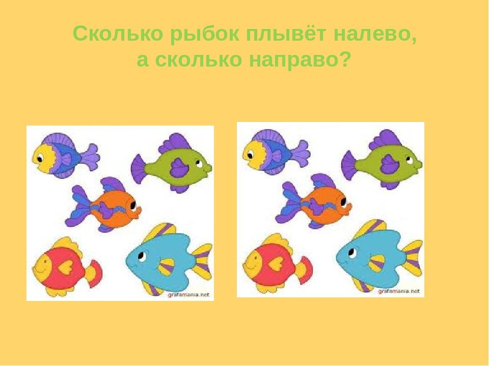 Сколько рыбок плывёт налево, а сколько направо?