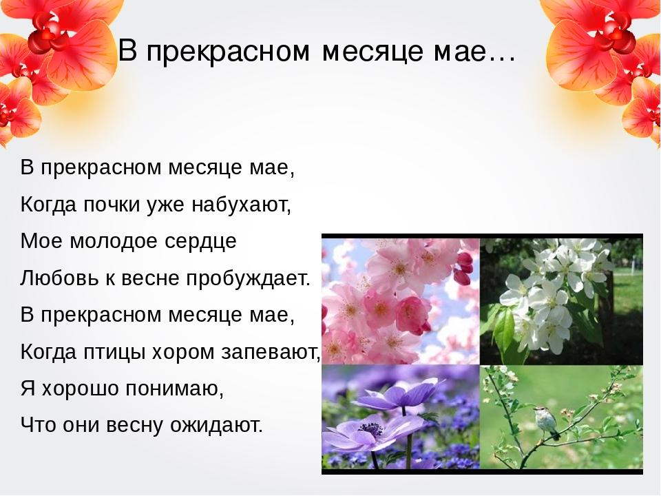 В прекрасном месяце мае… В прекрасном месяце мае, Когда почки уже набухают, М...