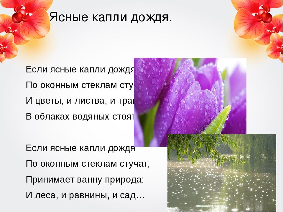 Ясные капли дождя. Если ясные капли дождя По оконным стеклам стучат, И цветы,...