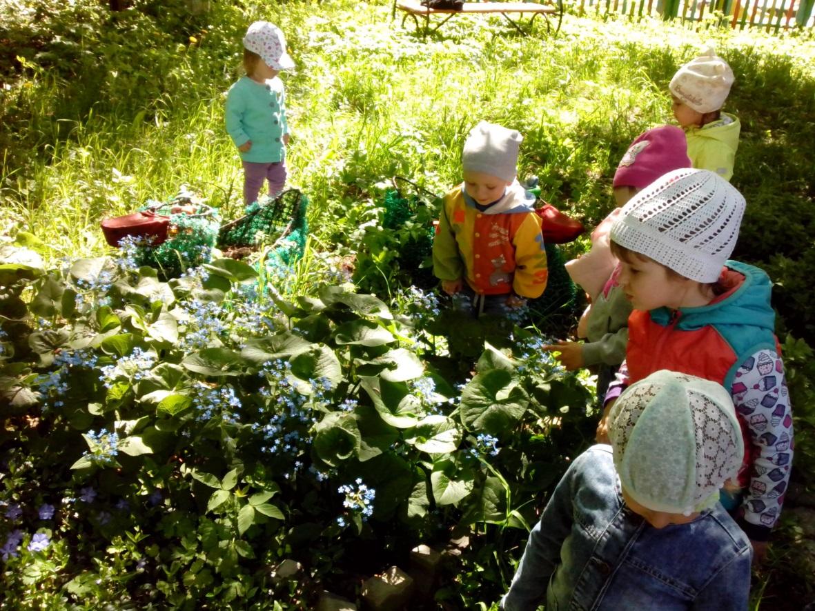 это картинки по экологическому воспитанию в школе подобрать нужное, что