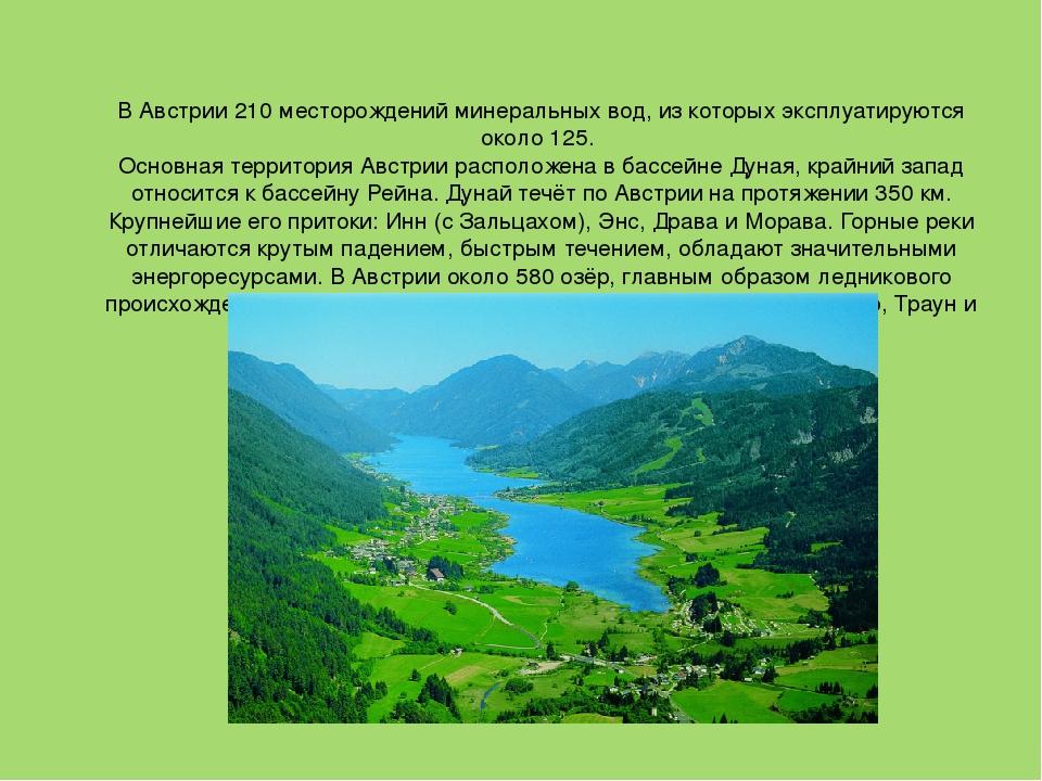Картинки коровы, картинки австрии для проекта