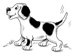 Муму тургенев картинки собаки