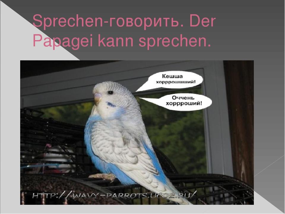 Sprechen-говорить. Der Papagei kann sprechen.