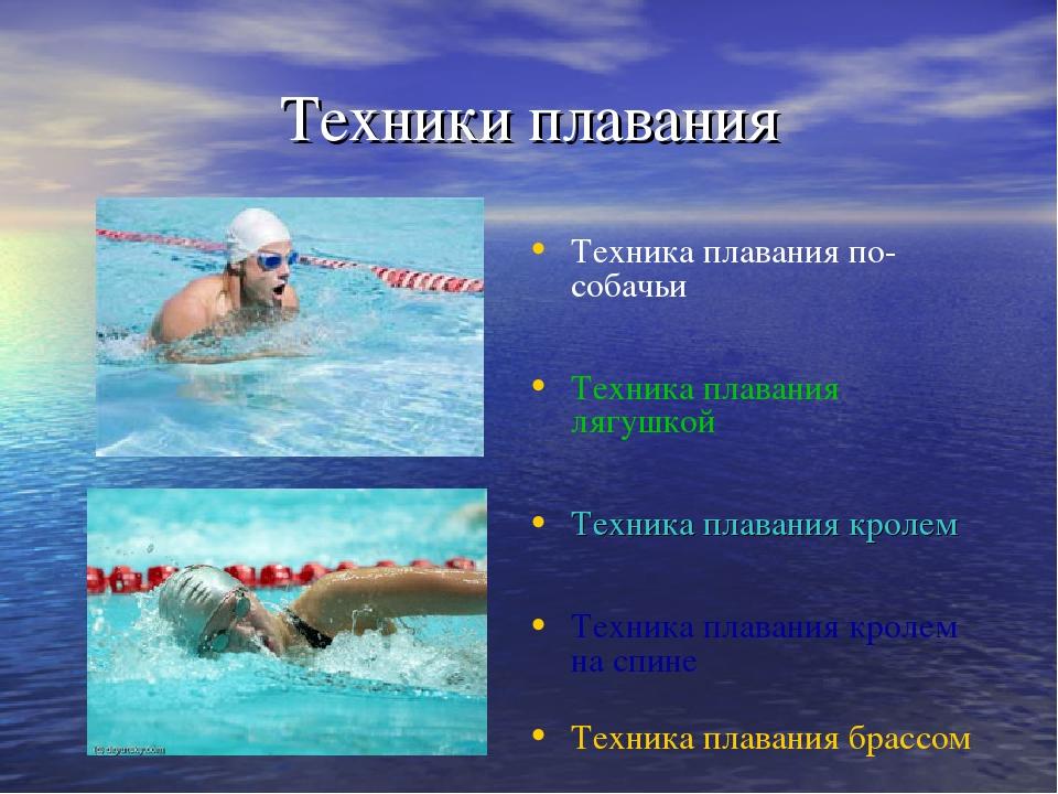 принципе реферат с картинками на тему плаванье медоносной базы месте