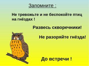 Запомните : Не тревожьте и не беспокойте птиц на гнёздах ! Развесь скворечник