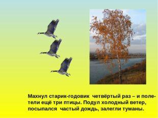 Махнул старик-годовик четвёртый раз – и поле- тели ещё три птицы. Подул холод