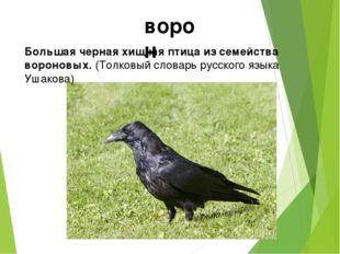 ворон Большая черная хищная птица из семейства вороновых. (Толковый словарь р