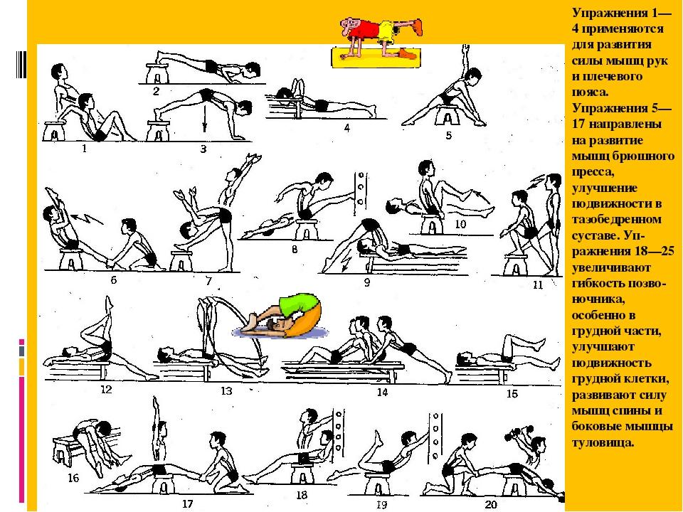 Комплекс упражнений для развития мышц плечевого пояса