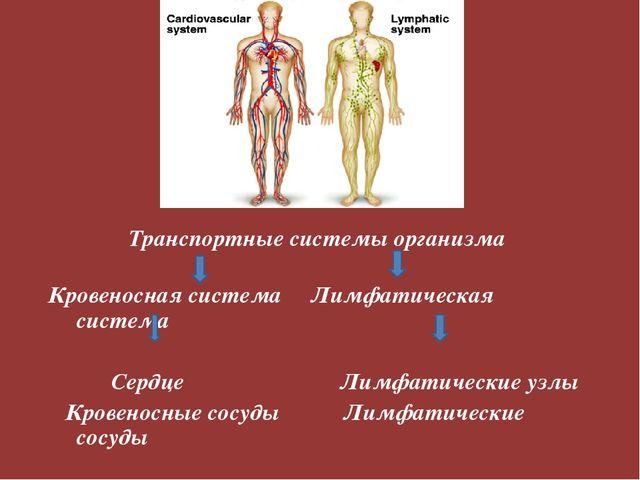 Гдз рабочая тетрадь по биологии 8 класс по теме кровеносная и лимфатическая система тема
