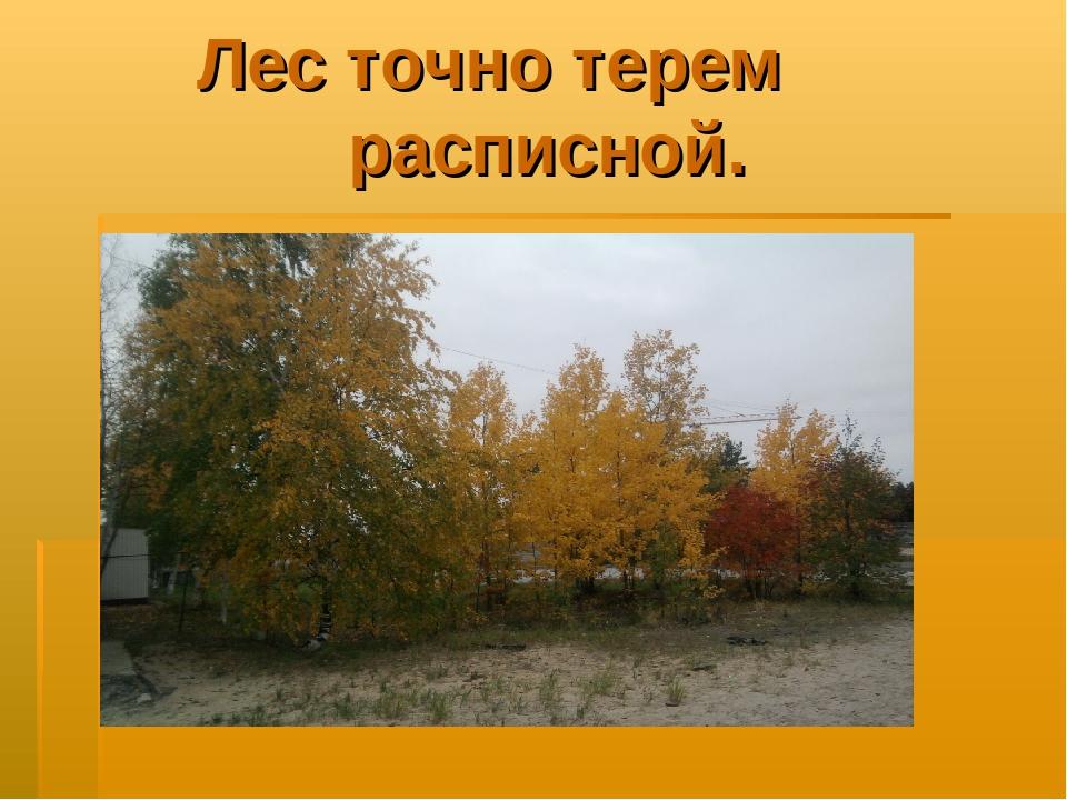 Лес точно терем расписной.