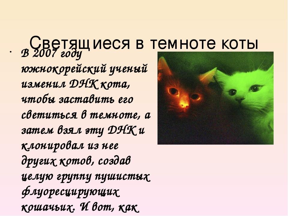 Светящиеся в темноте коты В 2007 году южнокорейский ученый изменил ДНК кота,...