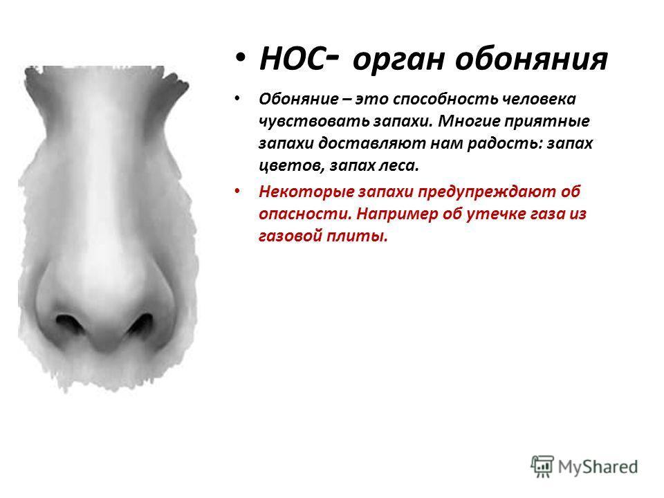час зачем человеку нос картинки например, тенденцией