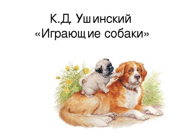 К.Д. Ушинский «Играющие собаки»