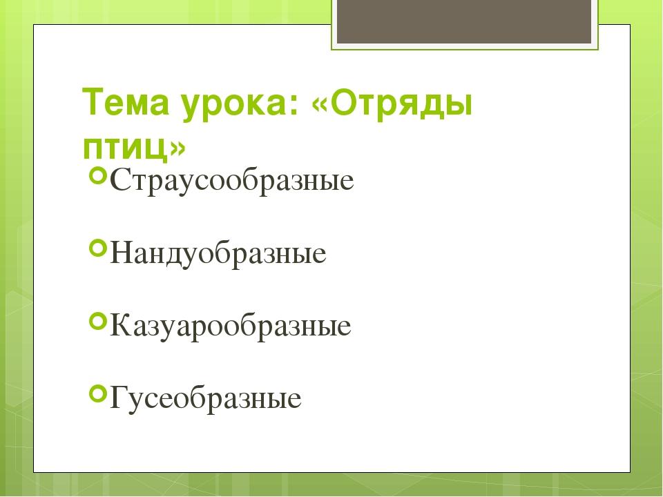 Тема урока: «Отряды птиц» Страусообразные Нандуобразные Казуарообразные Гусео...