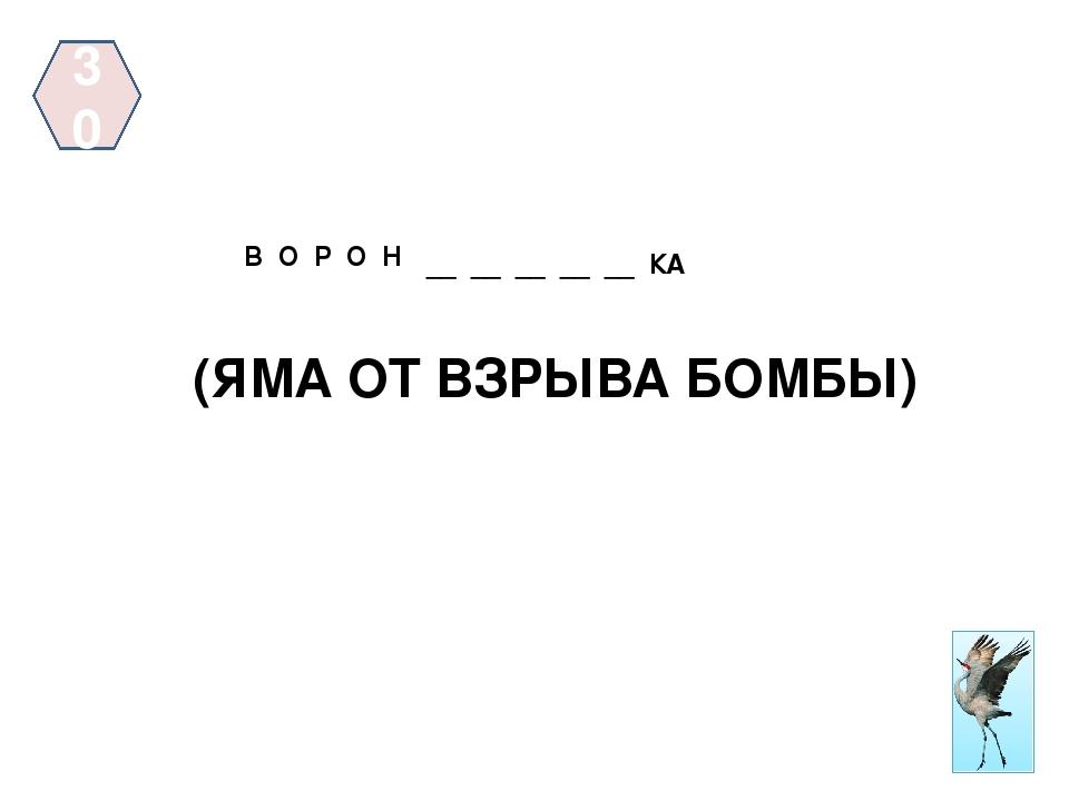 40 ЯК __ __ __ __ (ЖИТЕЛЬНИЦА САМОЙ ХОЛОДНОЙ РЕСПУБЛИКИ РФ) У Т К А