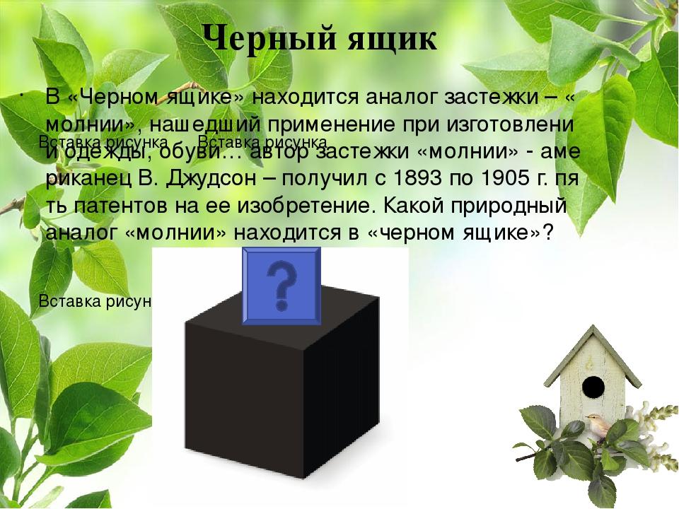 В «Черном ящике» находится аналог застежки – «молнии», нашедший применение пр...