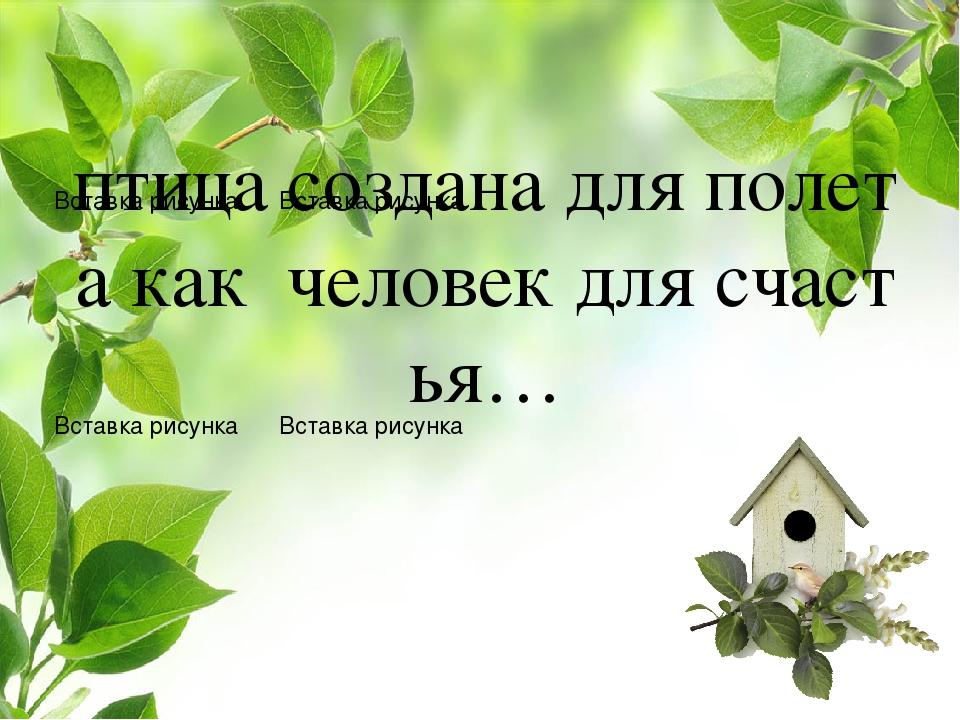 птица создана для полета как человек для счастья…