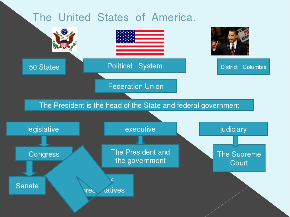 an analysis of political system in american government The political aspect of american government is built on bureaucracies who handle the different flavors of public service, ie health care unification and integration in the american political system a serious problem among latinos in america is finding a similarity among the many latino.