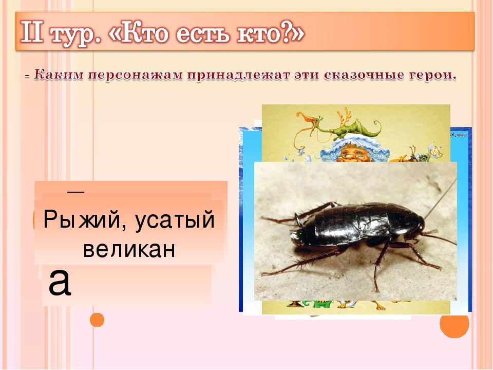 Айболит Бармалей Мойдодыр Цокотуха Каракула Тотошка, Кокошка Федора Рыжий, ус...