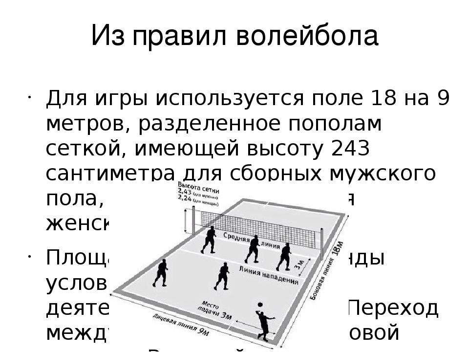 круг правила волейбола с картинками среднего