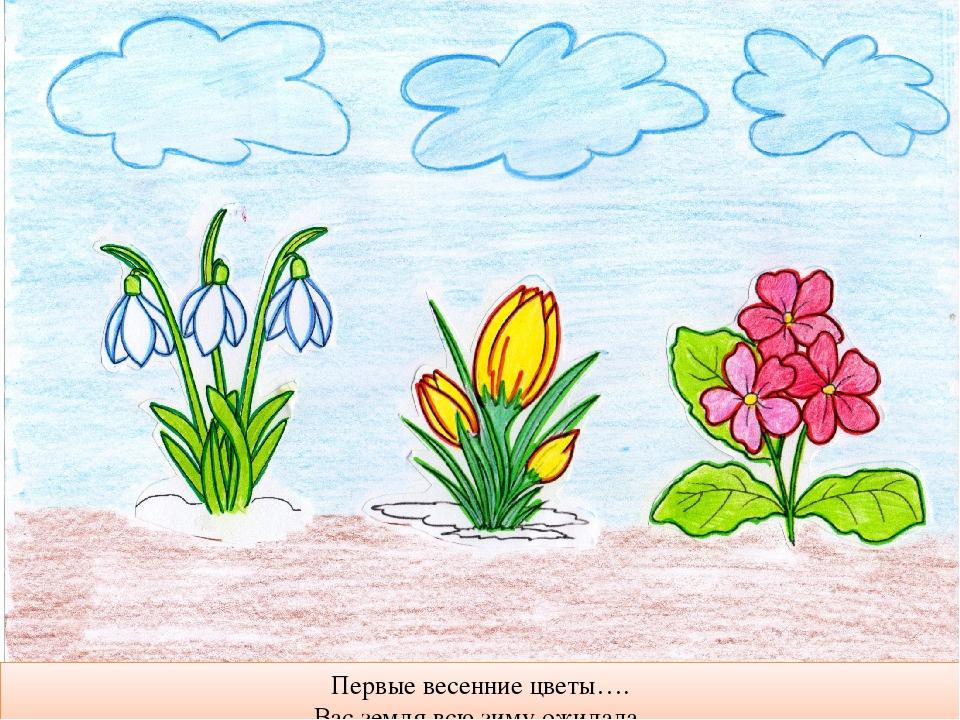 сможет выйти первоцветы рисунок поэтапно нить