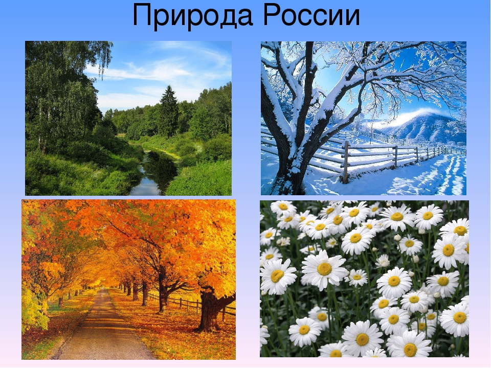 Картинки на тему россия моя родина