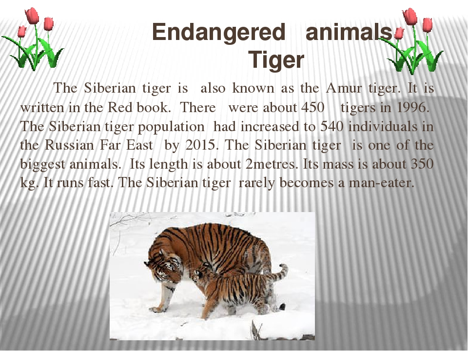 an introduction to endangered animals and the effectiveness of their conservation methods Introduction endangered animals beginning (international union for the conservation of nature and waitrose and iceland make new pledges to reduce their.