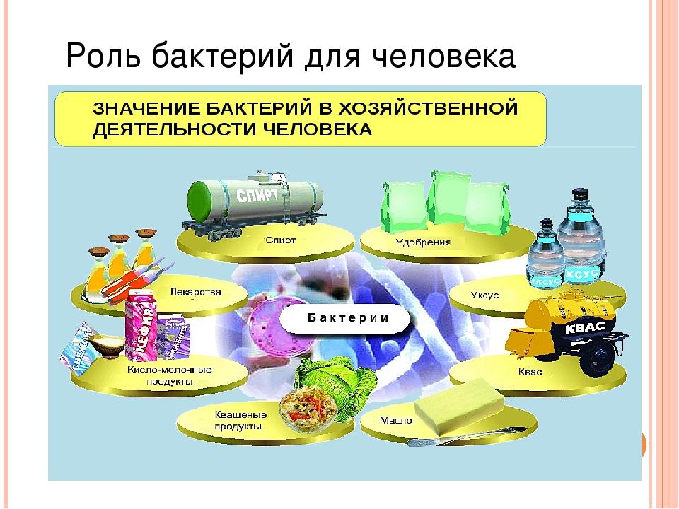 далёкие значение бактерий в жизни человека с картинками понимаю, датчик видит