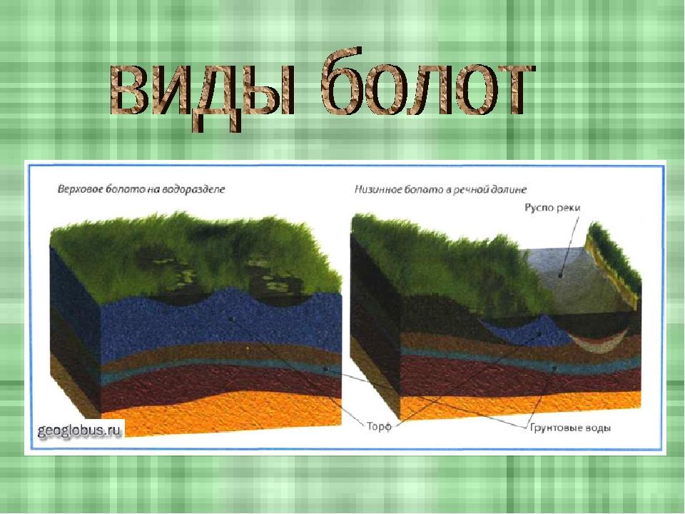 материал болота и их геологическая роль собрали марок, которых