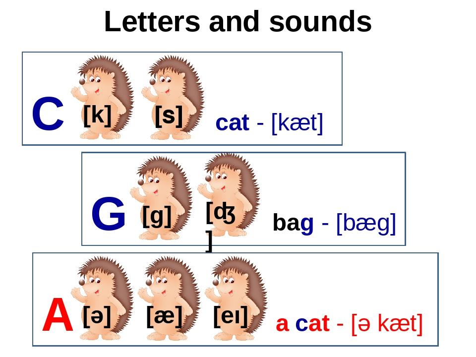 Letters and sounds [s] C [k] cat - [kæt] G [ɡ] bag - [bæg] A [ǝ] a cat - [ǝ k...