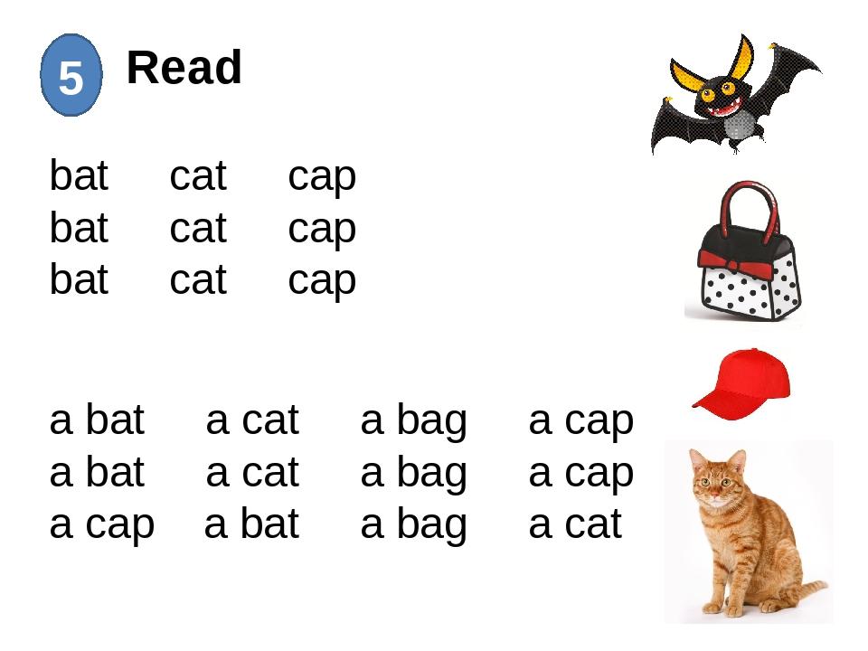 Read 5 bat cat cap bat cat cap bat cat cap a bat a cat a bag a cap a bat a c...