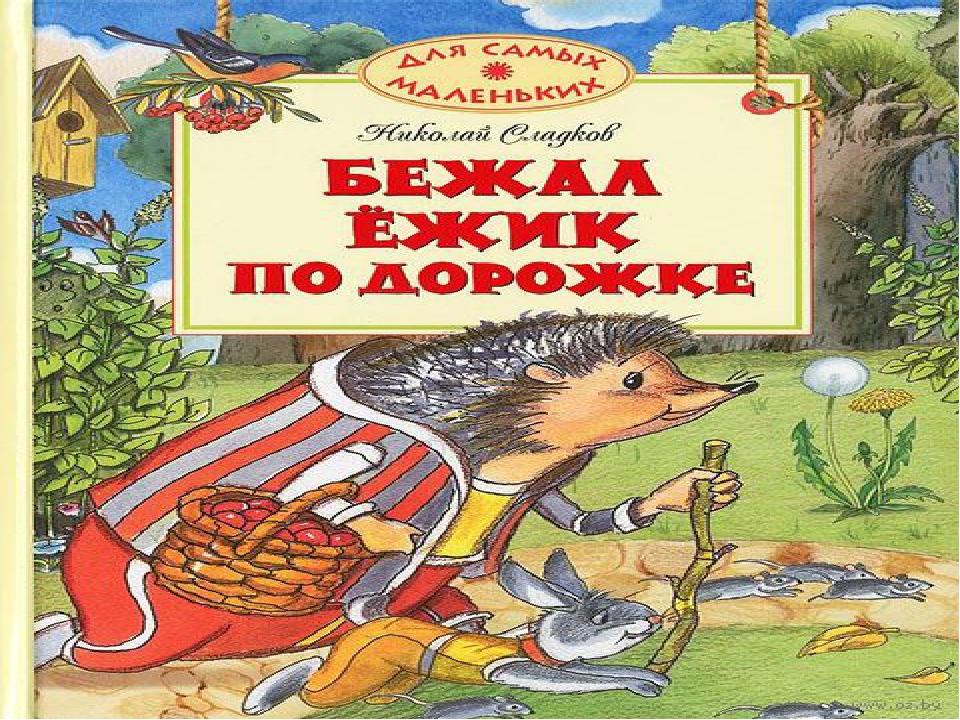 Сладков бежал ежик по дороге с картинками