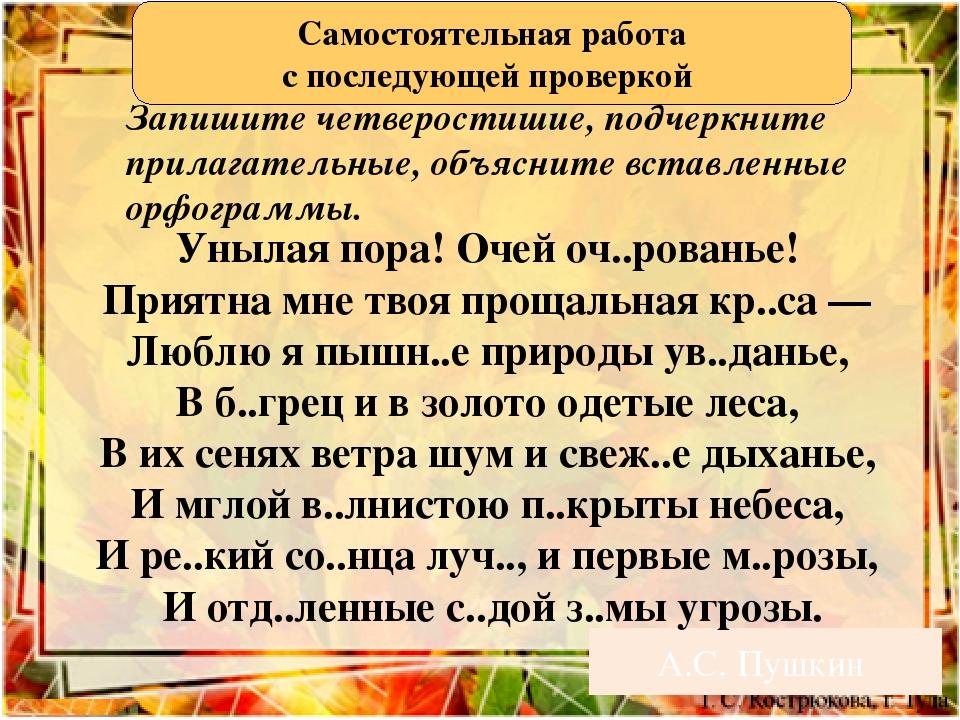 А.С. Пушкин Унылая пора! Очей оч..рованье! Приятна мне твоя прощальная кр..с...