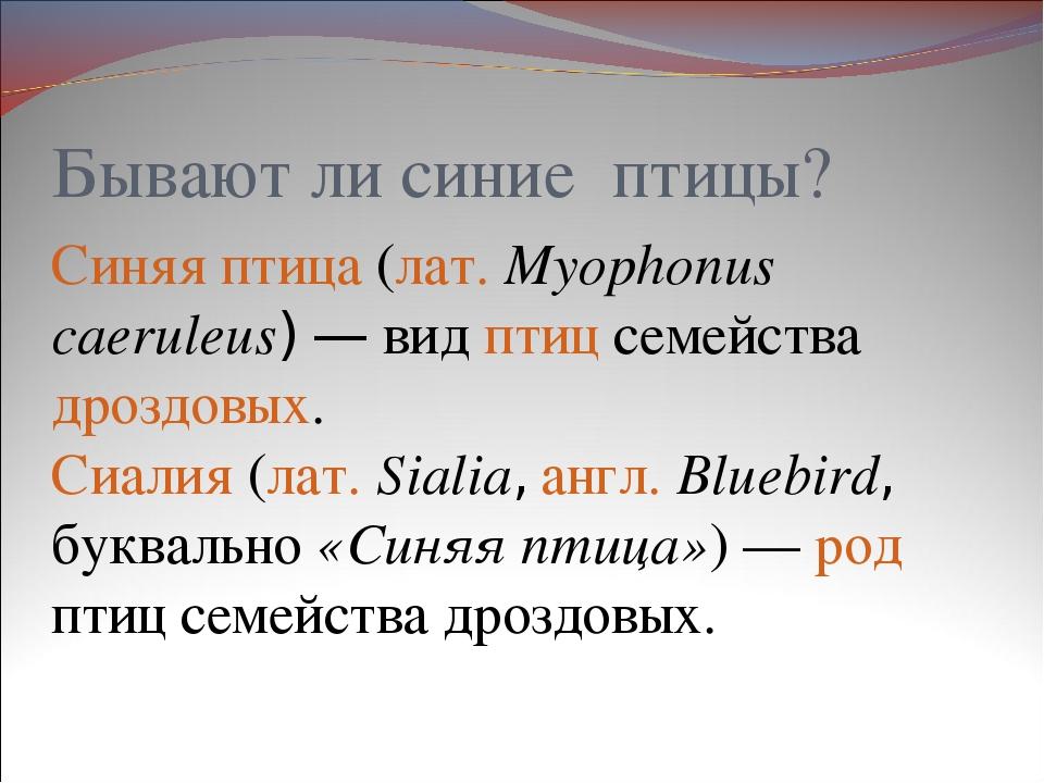 Бывают ли синие птицы? Синяя птица (лат.Myophonus caeruleus)— вид птиц семе...