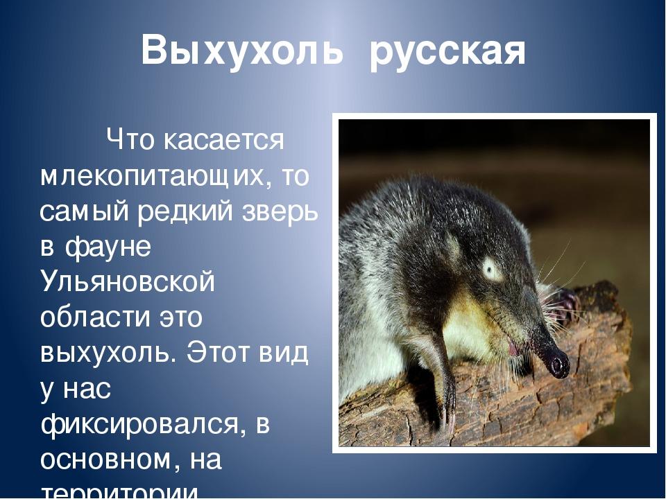 Животные ульяновской области фото и описание