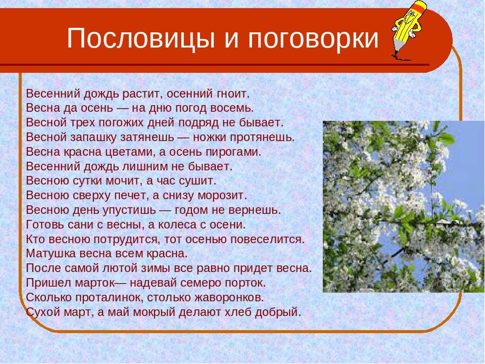 Пословицы про дождь на английском