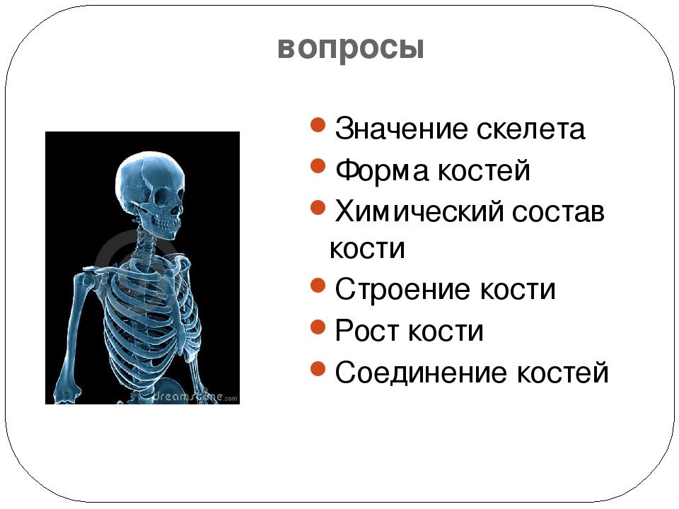 вопросы Значение скелета Форма костей Химический состав кости Строение кости...