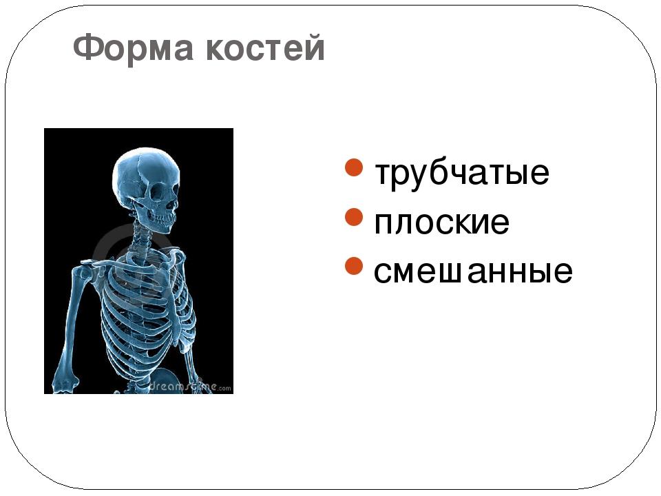 Форма костей трубчатые плоские смешанные