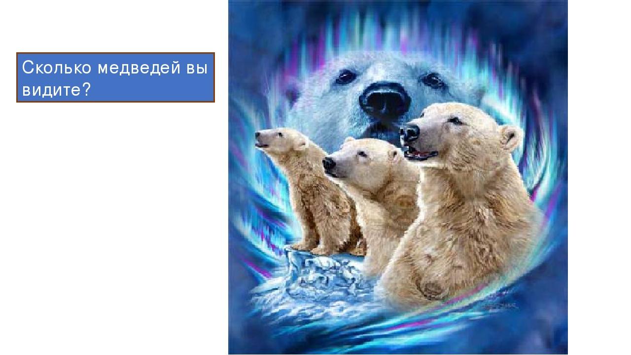 Сколько медведей вы видите?